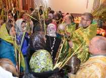 Festive service on the day of the Entrance of the Lord into Jerusalem